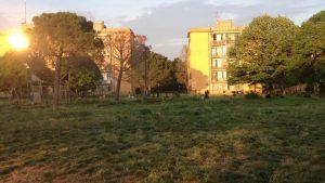 Tutto il verde di Centocelle – II Puntata